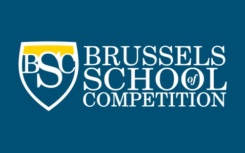 Image result for brussels school of competition